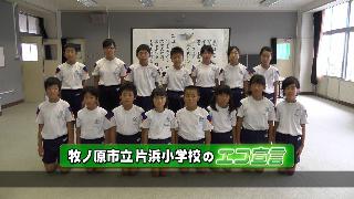 makinohara_katahama